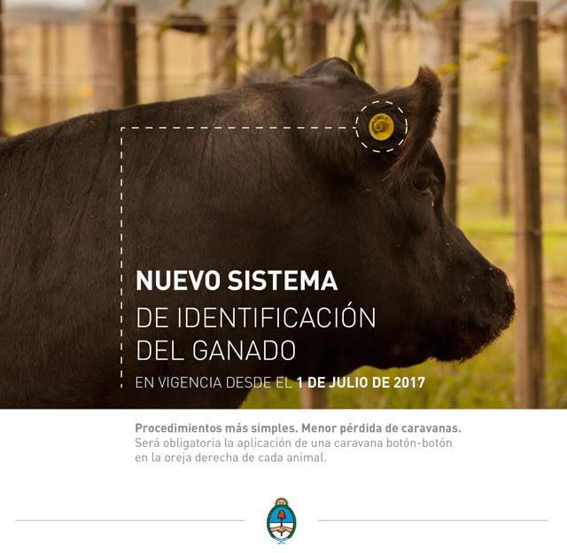 Nuevo sistema de identificación del ganado (folleto)