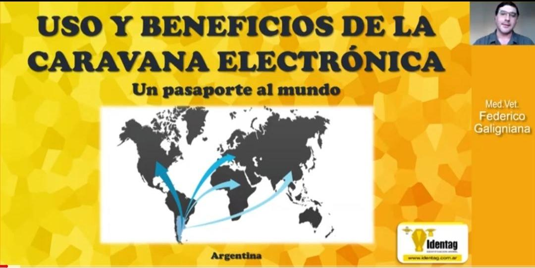 Uso y beneficios de las caravanas electrónicas